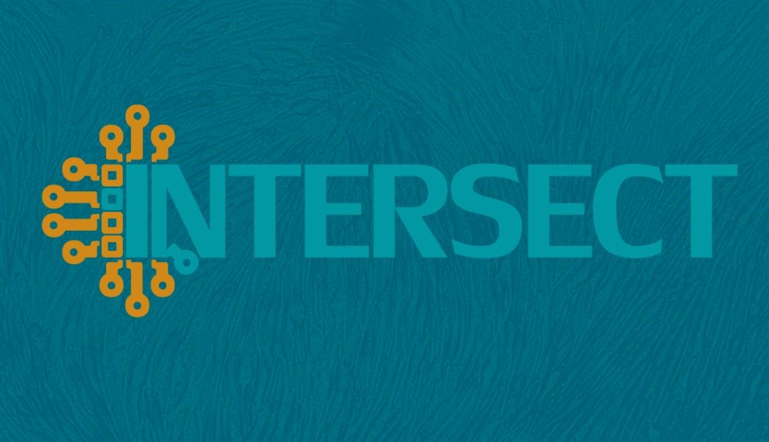 Open positions | INTERSECT